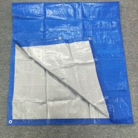 Low price pe tarpaulin / poly tarp , heavy duty waterproof car canvas tarpaulin