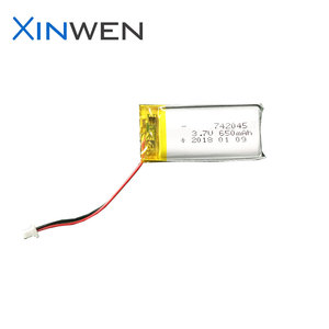 China factory XW 742045 smallest lipo battery 3.7v 650mah for smartwatch