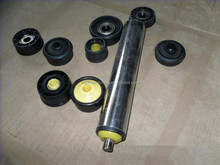 Stainless Steel gravity roller with plastic bearing housing