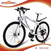 Sobowo S2-6 28 inch CE approved Mid Motor Off Road ELectric Bike