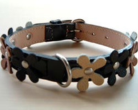 Leather Pet Collars ,Automatic pet leash ,Pet Shampoo,Dog Crate Pet Product, pet bed, wood pellet for pet bedding
