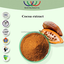 manufacturer supply free samples made in China theobromine cocoa extract coca seeds