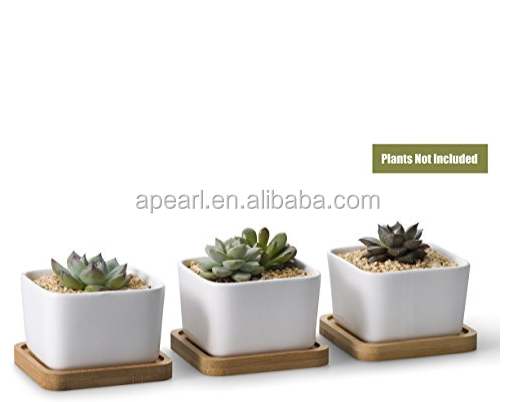 3.54 Inch White Ceramic Contemporary Square Design Succulent Plant Pot/ Cactus Plant Pot With Bamboo Tray - Pack of 3