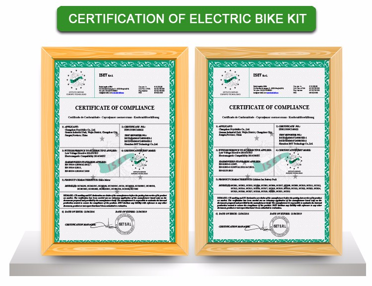 Professional 36V 250w/350W Electric bicycle Kit with water proof ,lithium battery in China