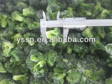 sell and provide 2014 new frozen broccoli floret 40-60mm