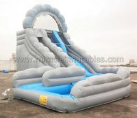 Commercial grade jumping castles inflatable water slide,inflatable water slide with pool M4004