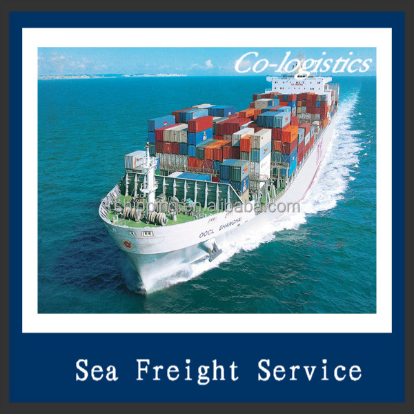 sea freight china logistics service to Valparaiso -Alex