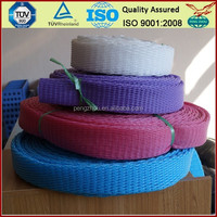 BV Onsite Check Assessed Supplier Malaysia Market Popular Wholesale Plastic Mesh Sleeving Net For Fresh Mango