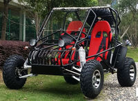 A2016 new buggy,gas go cart dune buggy for sale