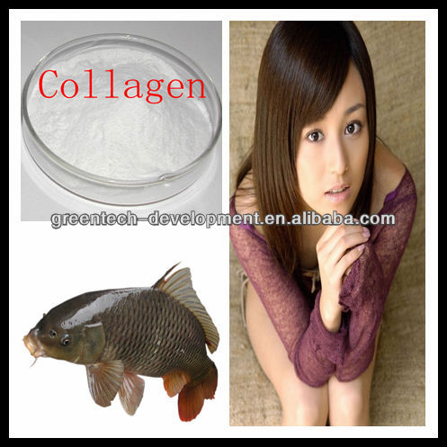 Hot Sell Perfect Quality Fish Collagen 90%