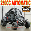 Automatic 250cc Buggy Car
