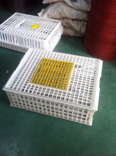 laboratory animal cage/animal transport cage/hamster cage
