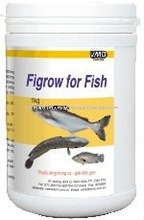 Nutritional Medicine for Aquaculture Animal