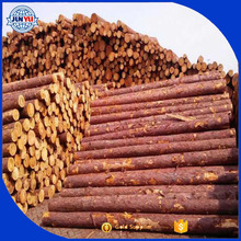 Red pine logs 30-60cm & 6 meter length wood logs