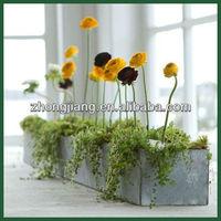 Garden Galvanized Planter