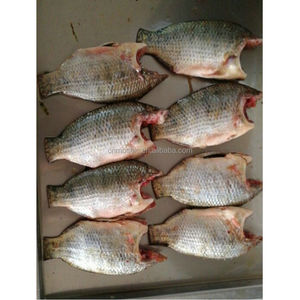 Whole cleaned frozen tilapia