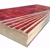 High quality 12mm shuttering plywood construction use for exporting