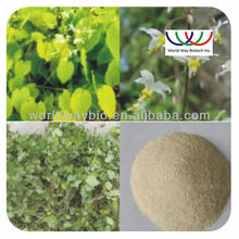 Hot sale !Sex improve product yin yang huo for sale ,yin yang huo plants for sale