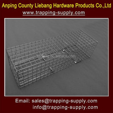 Single Door Steel Squirrel Cage Trap For Sale 23 X 7 X 6 Inch