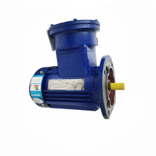 Reliable and Cheap explosion proof exp motor ex protect