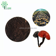 Health supplement Natural wall-broken reishi spore powder
