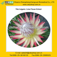 Tilia Vulgaris/lime flower Extract from GMP manufacturer