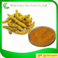 High Quality Natural Turmeric root Extract Powder/Curcumin/ Curcumin Powder