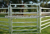 dairy cattle cow panel for export