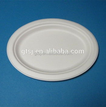 biodegradable disposable sugarcane oval plates