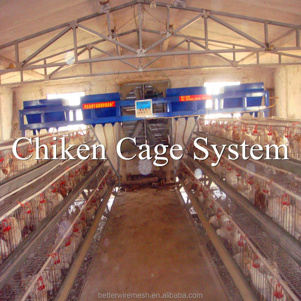 Better Factory industrial 3 tier layer poultry chicken house(120 birds type)hot-sale in Kenya