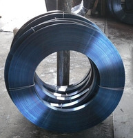 Blue metal strips