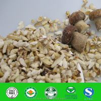 Bolete cubs wide raw material with high quality,low price