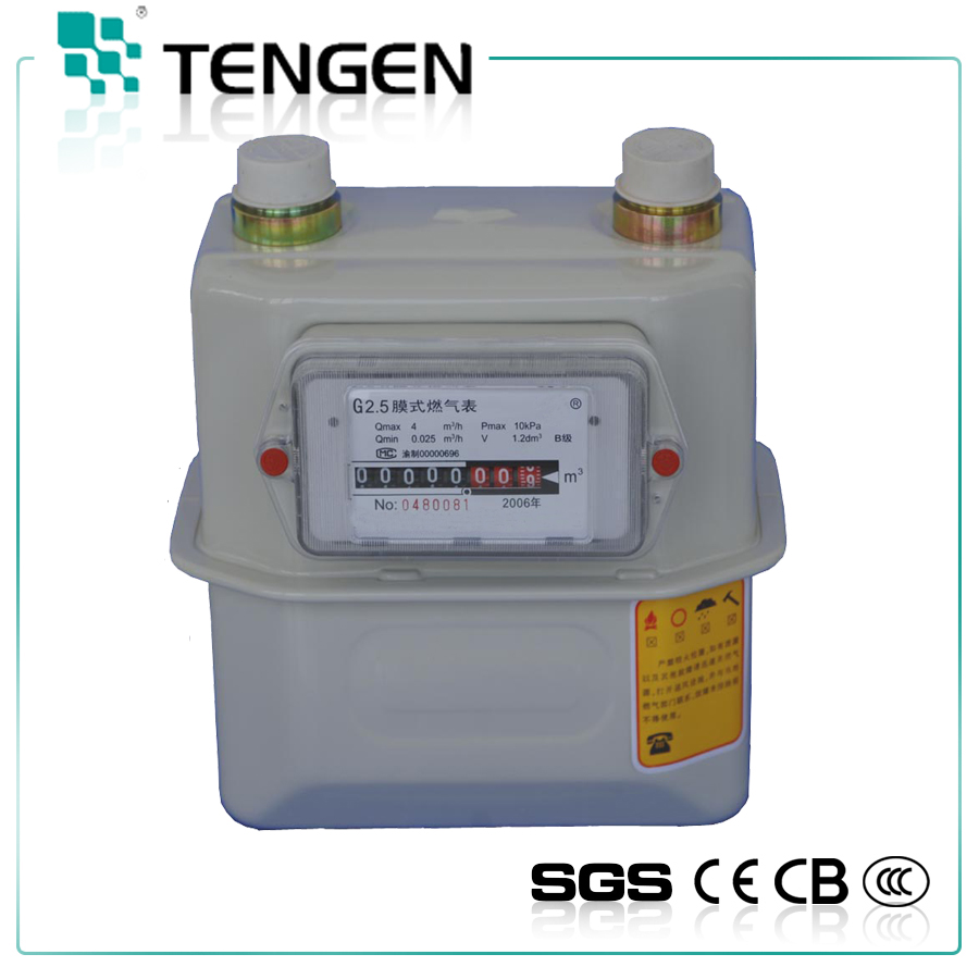 Wall Mounted Domestic Diaphragm Flow Meter G2.5