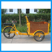 China Made Electric Cargo Bike/Cargo Tricycle/Bike Trailer Cargo Saled in Denmark market