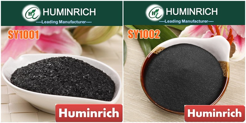 """HuminRich"" Ascophyllum Nodosum Humate Seaweed Extract Powder And Flake"