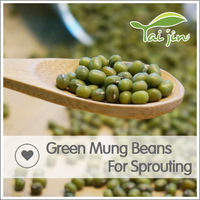 Green Mung Beans For Sprouting On Sale