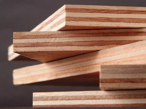 All types of hard wood and soft in linyi buy
