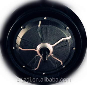 210 special designed brushless hub motor