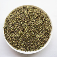 Good quality hemp seed / Best Price Hemp seed from China