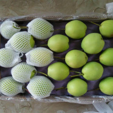 Supply Chinese fresh fruit golden Crown pear