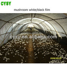 black mushroom shading film/modern appearance solar control greenhouse film/new fabric plastic membrane