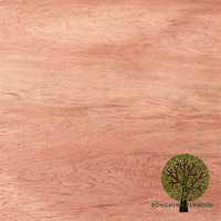 veneer hot press redwood veneer bintangor veneer