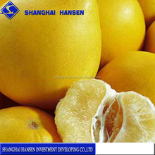 Import Agent Of Fresh South Africa grapefruit agents china trade agents
