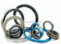 Precision durable sketeton oil seal/ rubber oil seal/grease seal