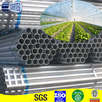 Factory Offered Agricultural Greenhouse Galvanized Steel