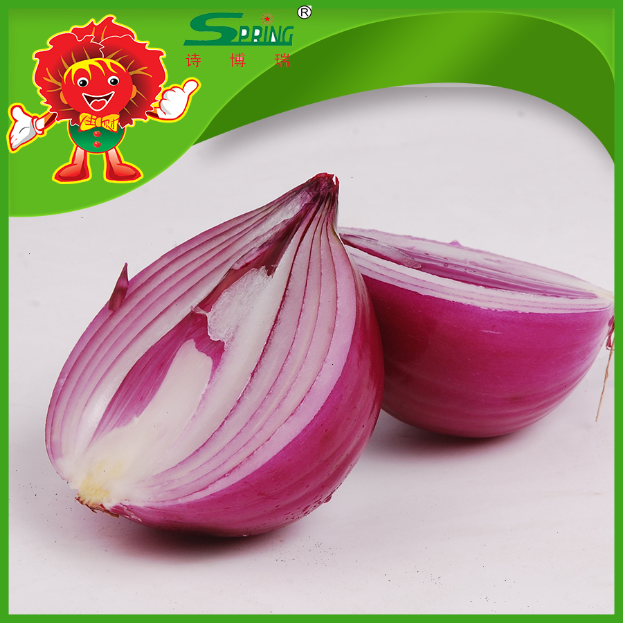onion importer from dubai/fresh onion