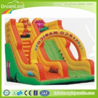 Inflatable aqua slide / inflatable slip n slide