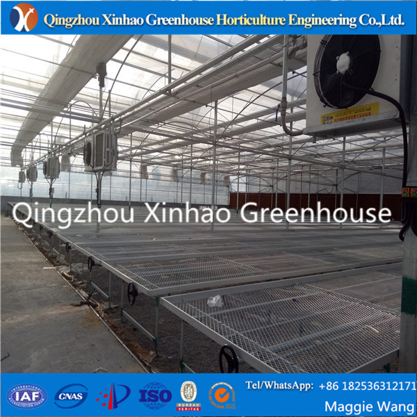 Hot Dip Galvanized Nursery Flood Tray, Greenhouse Rolling Bench, Seeding Bed