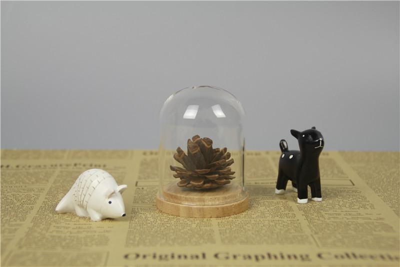 mini glass cloche.jpg