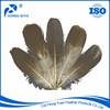 Alibaba Trading High Quality Decoration Feather Material Free Sample Grey Goose Down Feather